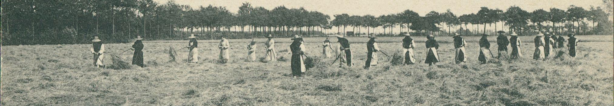 Moines trappistes au travail dans les champs