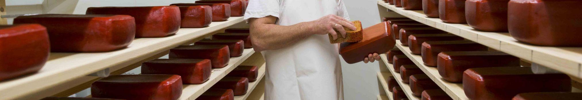 Het kaasmaakproces