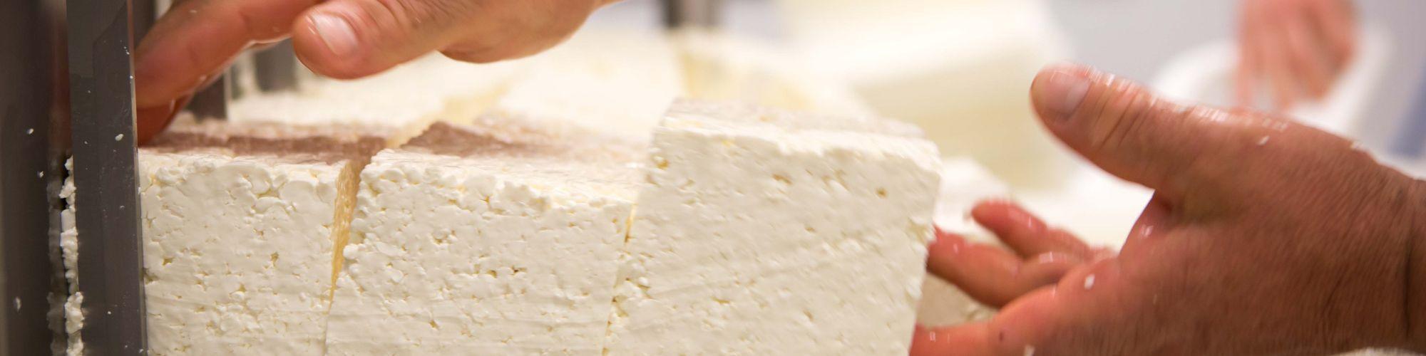 Découpage en blocs de fromage